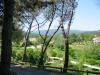 Monterchi park