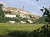 Monterchi fields