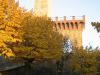 Monterchi tower