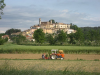 Working the fields in Monterchi