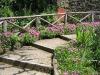 Monterchi steps